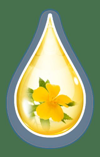 DESEO® • Wirksame Hilfe dank DESEO® mit Hilfe der natürlichen Arzneistoffs Turnera diffusa.